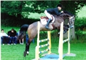 hector at Hickstead 2011